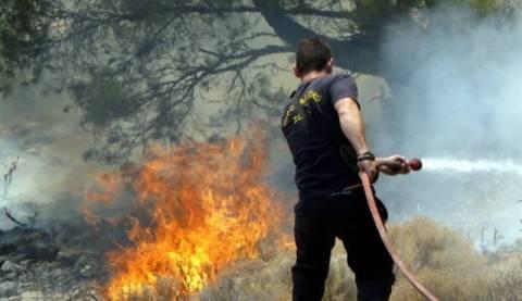 Πυρκαγιά στο Μαρκόπουλο Αττικής