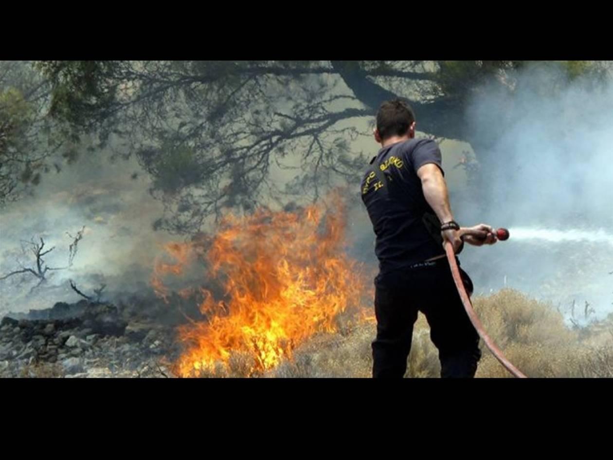 Απειλούνται σπίτια από τη φωτιά στο Μαρκόπουλο
