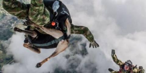 Απίστευτες εικόνες: Μια σκυλίτσα - αλεξιπτωτιστής! (pics)