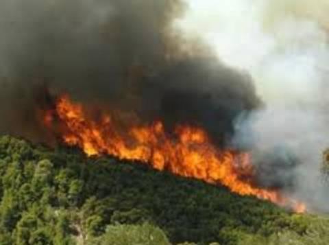 Πού υπάρχει πολύ υψηλός κίνδυνος πυρκαγιάς την Κυριακή