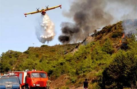 Σε ύφεση η μεγάλη πυρκαγιά στη Βαρυμπόμπη