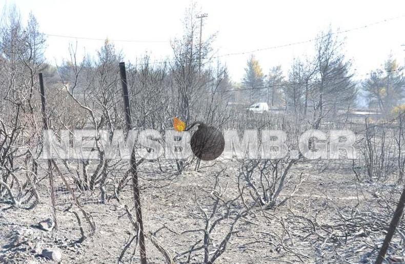 Καμένη γη στη Βαρυμπόμπη
