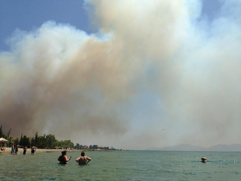 Οι φωτογραφίες της Έλλης Κοκκίνου από τη φωτιά στην Αργολίδα