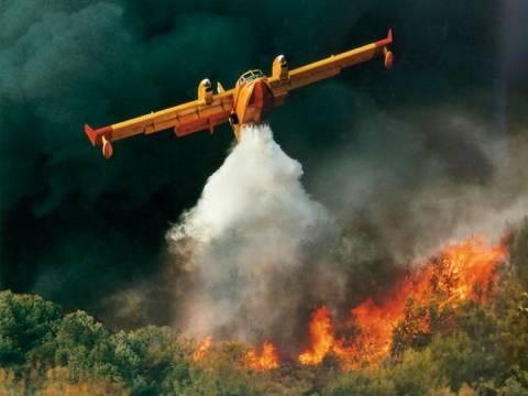 Σε εξέλιξη η πυρκαγιά στην Ερμιονίδα