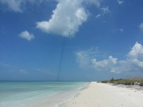 Μυστήριο με μαύρη γραμμή στον ουρανό της Φλόριντα