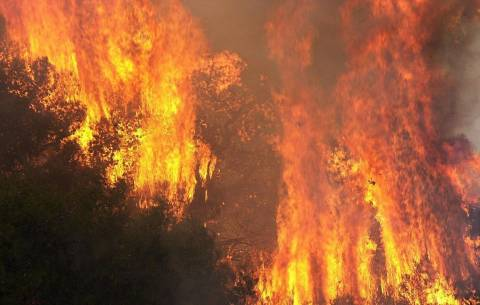 Πυρκαγιά στη Γραβιά Φωκίδας