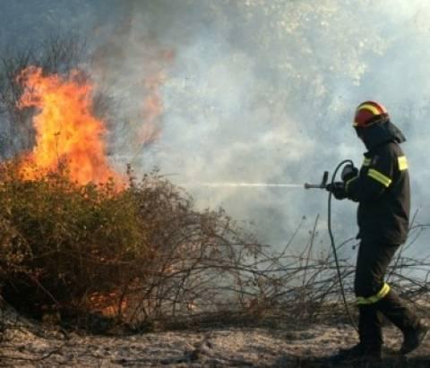 Mετόχι Καπανδριτίου: Υπό μερικό έλεγχο τέθηκε η πυρκαγιά