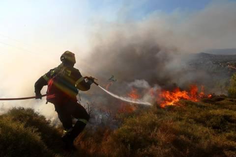 ΤΩΡΑ: Φωτιά στην Ευκαρπία Θεσσαλονίκης