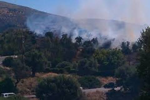 Υπό μερικό έλεγχο η πυρκαγιά στον Πολυπόταμο Εύβοιας