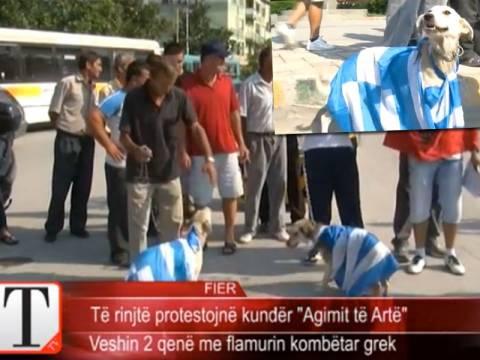Σοκ! Αλβανοί εθνικιστές έντυσαν σκυλιά με την ελληνική σημαία (video)