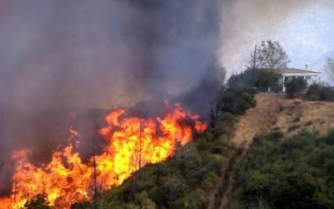 Συνελήφθη 56χρονος για τη φωτιά στο Κατσιμίδι