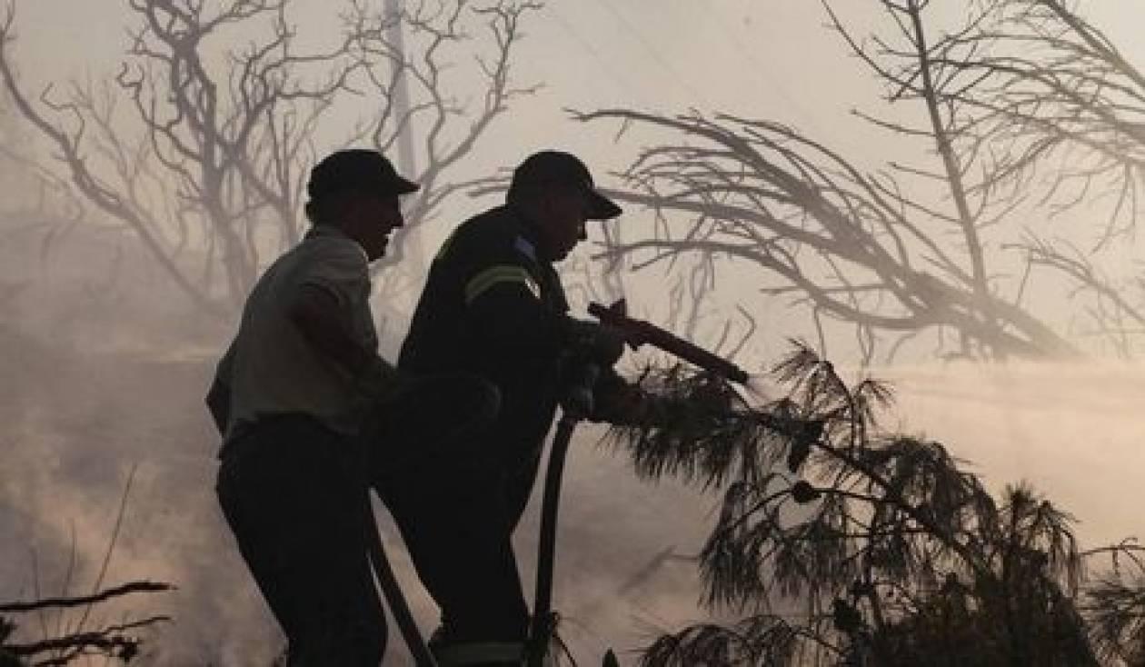 Συνελήφθη 45χρονος αλλοδαπός για την φωτιά στα Κύθηρα