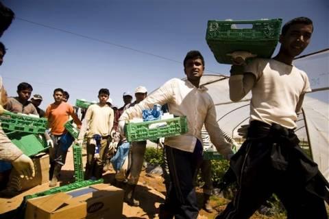 Σχεδιάζεται η δημιουργία κάμπινγκ για τους εργάτες γης της Μανωλάδας