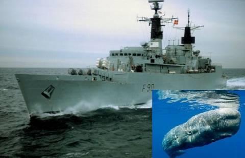 Πέρασαν τις φάλαινες για υποβρύχια και εξαπέλυσαν τορπίλες!