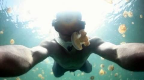 Άνδρας κολυμπά σε λίμνη με μέδουσες (video)