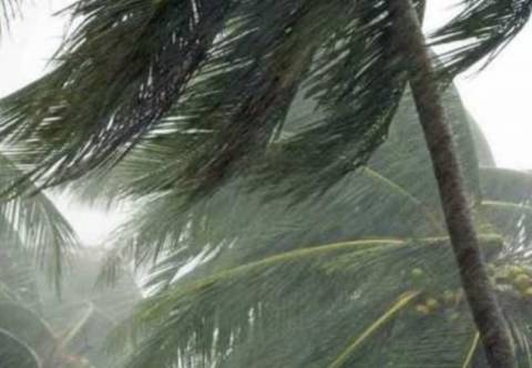 Επί ποδός το Μεξικό για τον τροπικό κυκλώνα