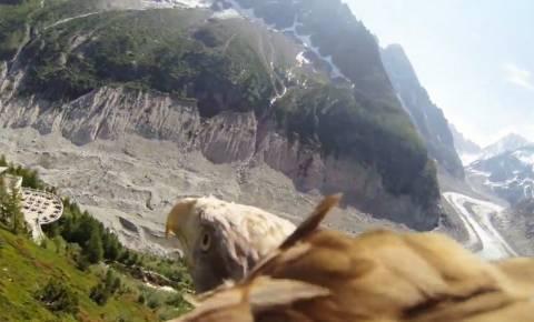 Απίθανο βίντεο: Μία βόλτα... «με τα μάτια» του αετού!