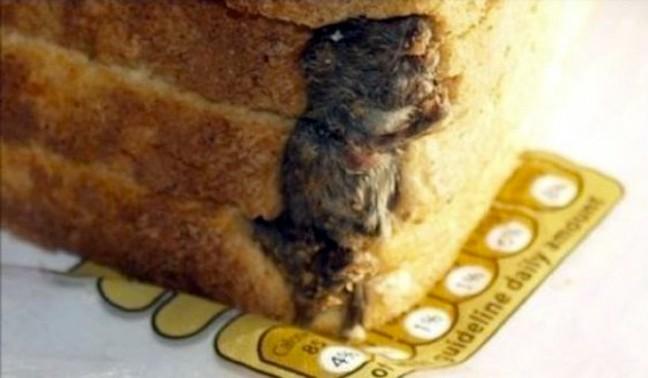 Θα σας κοπεί η όρεξη: Ό,τι πιο αηδιαστικό έχει βρεθεί σε φαγητό! (pics