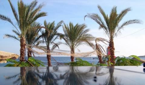 Οι τουριστικές επιχειρήσεις Ρωσίας επιθεωρούν τα αιγυπτιακά θέρετρα