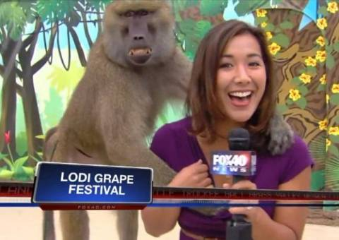 Δείτε τι έπαθε η όμορφη δημοσιογράφος κατά τη διάρκεια του ρεπορτάζ!