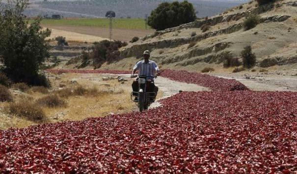 Απίστευτο: Δείτε γιατί είναι κόκκινος αυτός ο δρόμος