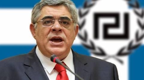 Χρυσή Αυγή: «Άδικη και αντισυνταγματική η προφυλάκιση του αρχηγού»