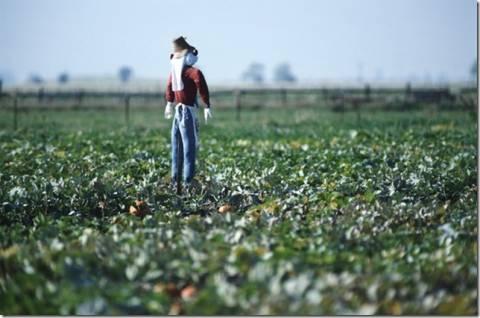 Προνομιακή υποστήριξη για νέους αγρότες