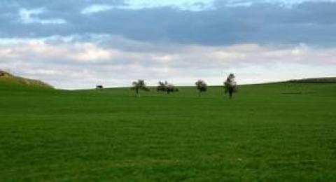 Στρεμματικός φόρος στα αγροτεμάχια από το 2014
