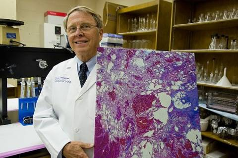 ΣΟΚ: Επιστήμονας αποκαλύπτει τι περιέχουν πραγματικά οι κοτομπουκιές!