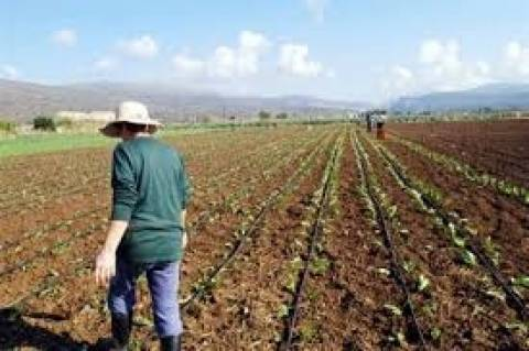 Αναβρασμός στους αγρότες για το φόρο στα αγροτεμάχια