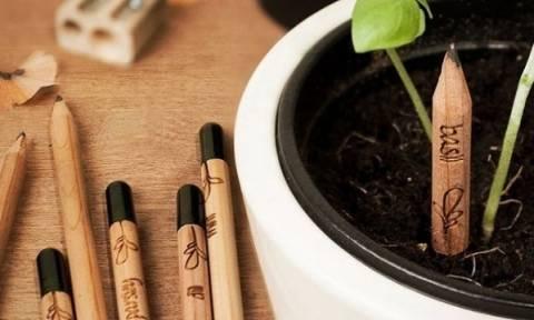 Τώρα μπορείτε να φυτέψετε και τα... μολύβια σας! Είναι για καλό σκοπό!