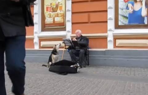 Απίθανο βίντεο: Σκύλος συνοδεύει... μουσικό του δρόμου!