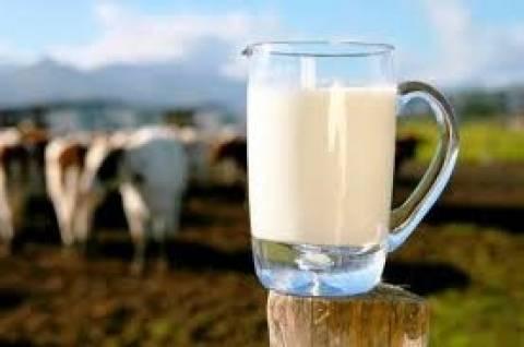 Σκορδάς: Εξετάζουμε αύξηση της διάρκειας ζωής για το φρέσκο γάλα