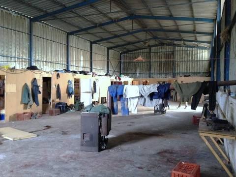 Αιτωλικό:Κρατούσαν φυλακισμένους αλλοδαπούς-Μάζευαν 12 ώρες μανταρίνια