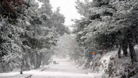 Χιονίζει στην Πελοπόννησο-Αποκλεισμένο χωριό στην Κυνουρία