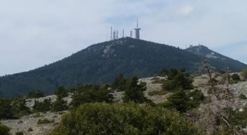 Φθιώτιδα: Πήρε τα βουνά για να κλέψει πετρέλαιο!