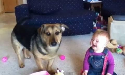 Τι κάνουν ένα μωρό κι ένας σκύλος όταν δουν σαπουνόφουσκες;
