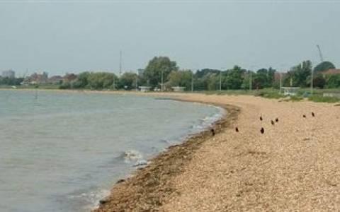 Έκανε βόλτα τον σκύλο της στην παραλία και έπαθε ΣΟΚ όταν αντίκρυσε...