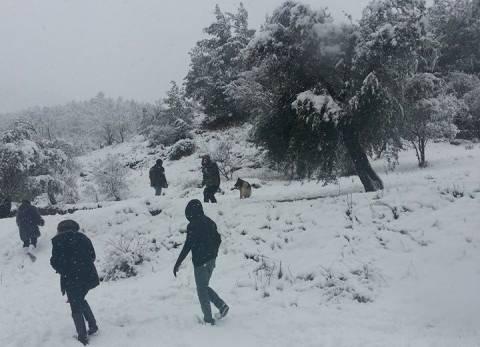 Βίντεο: Δείτε την Κύπρο χιονισμένη!