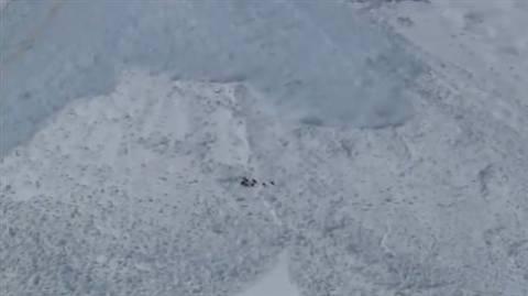 Αγριοκάτσικα σώζονται στο... τσακ από χιονοστιβάδα! (vid)