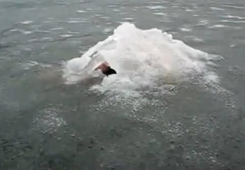 Εμφανίστηκε το «τέρας» του Λοχ Νες σε λίμνη της Ρωσίας (βίντεο)