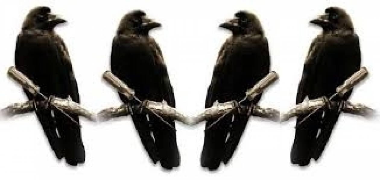 Επιτέλους θα ασχοληθούν με τα «κοράκια» των εισπρακτικών