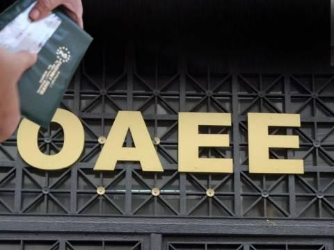 ΟΑΕΕ: Μπαλάκι οι ευθύνες για τα βιβλιάρια
