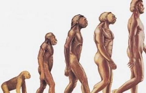 Θεωρία της εξέλιξης: 1 στους 3 Αμερικανούς δεν την αποδέχονται