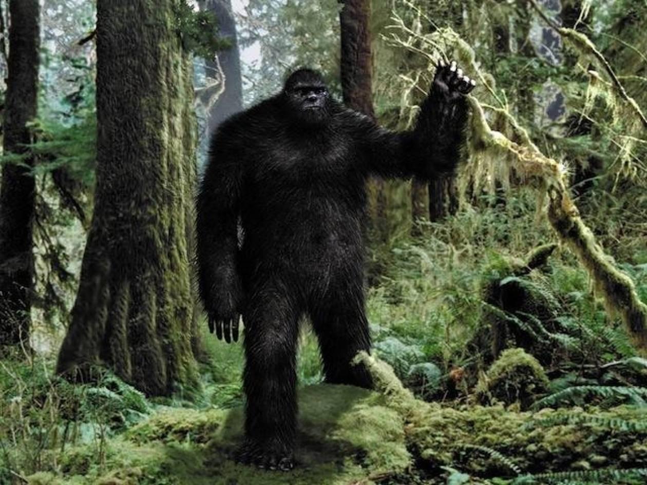 Κυνηγός ισχυρίζεται ότι σκότωσε τον θρυλικό Bigfoot! (pic+video)