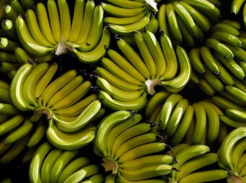 Πειραιάς: «Μπλόκο» σε ακατάλληλες μπανάνες