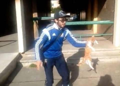 Στη φυλακή 24χρονος που κακοποίησε γάτα και το κατέγραψε σε βίντεο