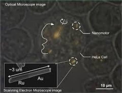 Νανομηχανές κάνουν βόλτες σε κύτταρα