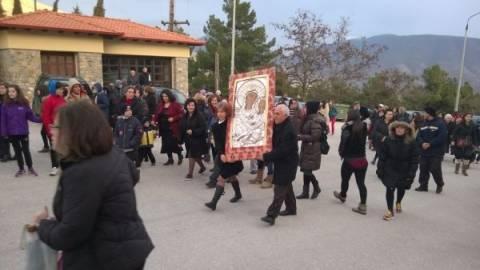Υποδοχή για την εικόνα της Παναγίας Ελεούσας στη Σιάτιστα (βίντεο)