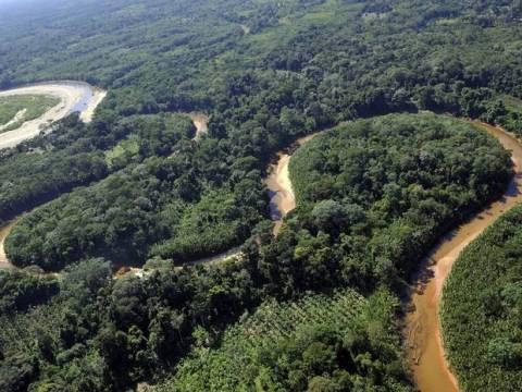 Εξαφανισμένη 9χρονη βρέθηκε στον Αμαζόνιο μετά από 7 μήνες